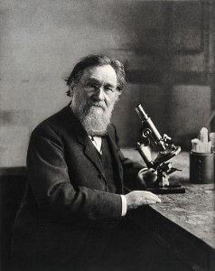 bactériologiste russe Metchnikoff