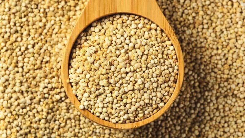 Pompoen-quinoa-curry