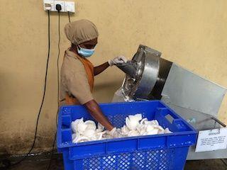 Grote stukken witte kokosvruchtvlees wordt tot kokosrasp vermalen