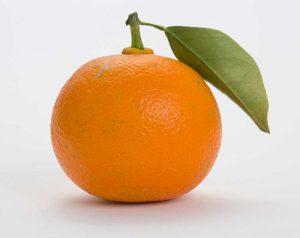 La synéphrine (présente dans les agrumes) est un coupe-faim disponible sans ordonnance
