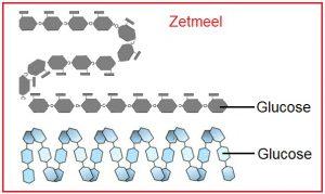 suikermoleculen zetmeel en glucose