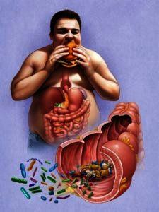 bacterien-in-darmen