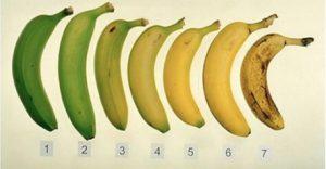 banane à maturité