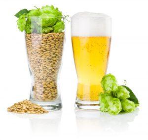 la bière n'est pas compatible avec un régime pauvre en glucides