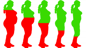 illustratie van een vrouw die steeds slanker wordt