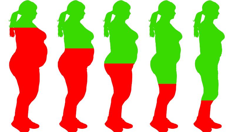 dieet schema gezond afvallen