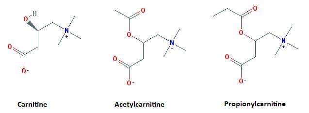 Formes de carnitine