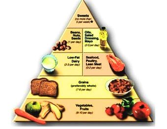 dash diet piramide