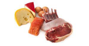 dierlijke voedingsmiddelen die alle essentiële aminozuren bevatten