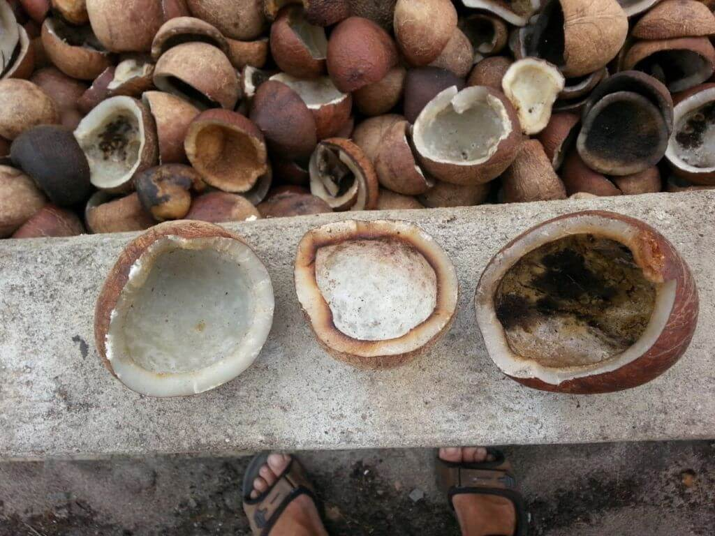 kokosnoten met verschillende houdbaarheidsdata