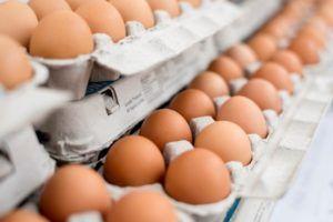 Idea recibió huevo de colesterol