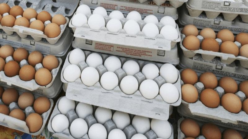 Onderzoek: eet gerust elke dag een eitje