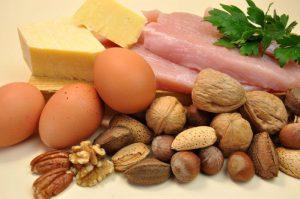 Un régime cétogène normal requiert un apport en protéines modéré.
