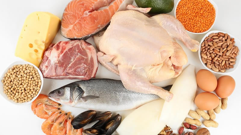 Eiwit(rijk) Dieet: BasisInfo, Eetschema, 9 Recepten en 5 Gevaren