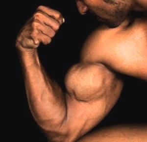 eiwitten-chiazaad-spieren