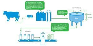 fermentatieproces van koeien naar melkproducten afgebeeld