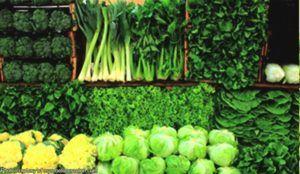 groene-bladgroenten