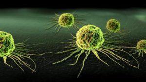 Puede reducir el riesgo de cáncer