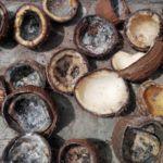 Waarom Vrijwel Alle Kokosolie Bewerkte Troep Is + 3 Goede Varianten