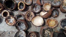kokosolie troep copra