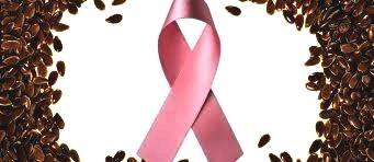 lijnzaad-en-kanker