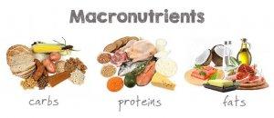 voedingsmiddelen van de 3 macronutriënten geïllustreerd