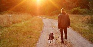 Pratiquez une activité physiqueà l'air libre