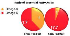oméga-3 et oméga-6 viande rouge
