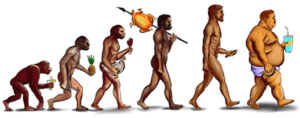 verschillende uitgestorven menssoorten en de moderne mens