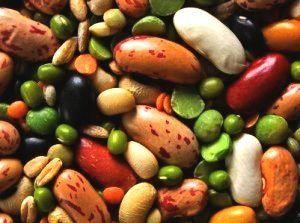 plantaardige-eiwitten