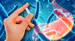 Les probiotiques aident à diminuer l'absorption des graisses
