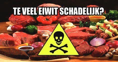te veel eiwitten schadelijk