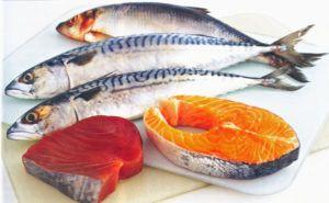 vette vis zalm makreel tonijn