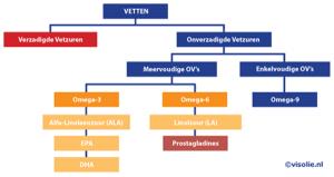 vetten bestaan uit uitgebreide groep van verzadigde vetzuren en onverzadigde vetzuren